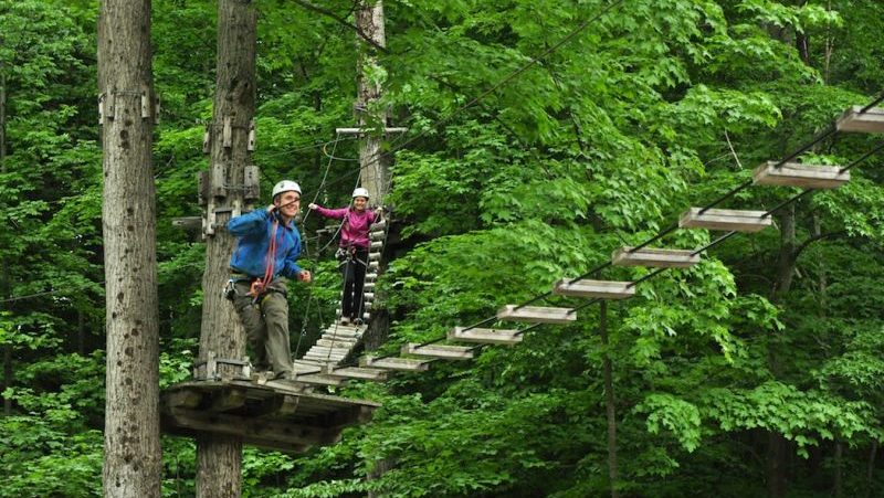 Tree Top Trekking Course