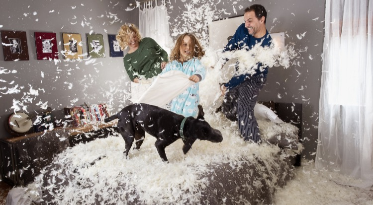 Photo of people having a pillow fight