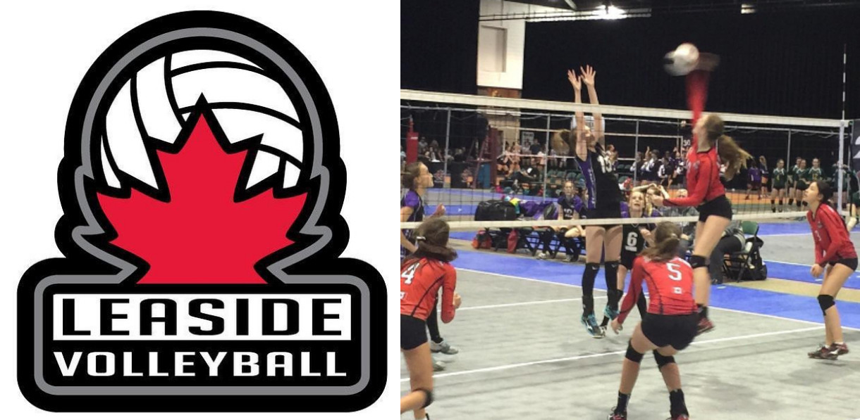 Photo of the Leaside Volleyball Clubs logo and court