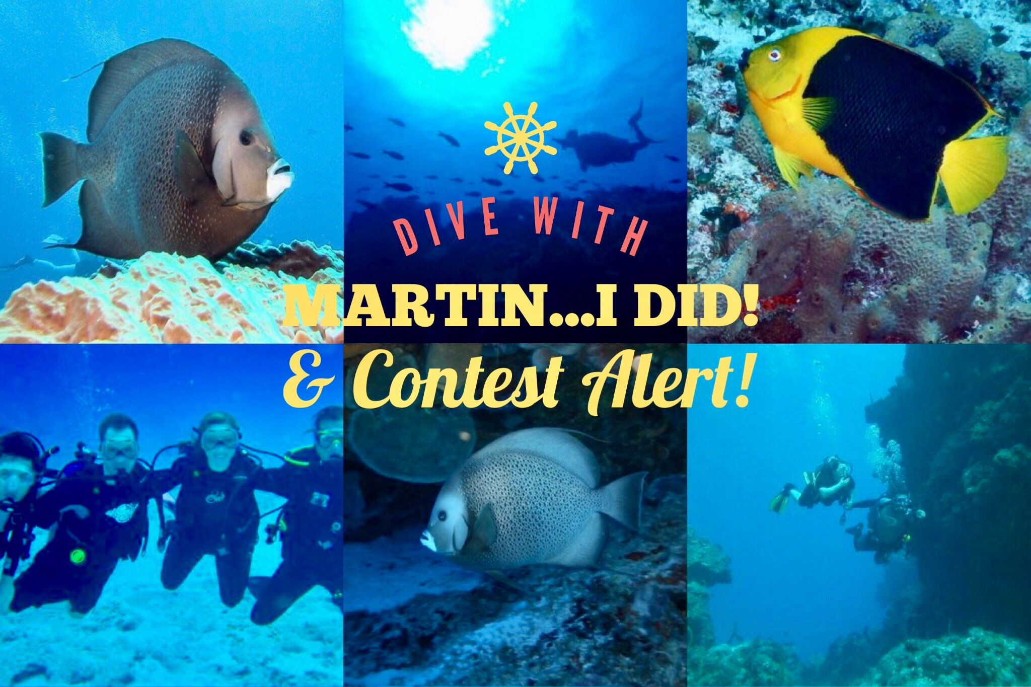 Cozumel Scuba Diving and Contest Alert